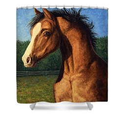Shower Curtain featuring the painting Stir Crazy by James W Johnson