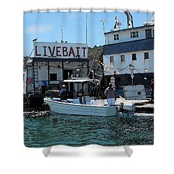 Stocking Up On Live Bait Shower Curtain by Cedric Hampton