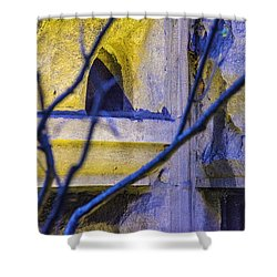 Stone Abstract One Shower Curtain