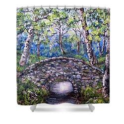 Stone Bridge 2 Shower Curtain by Megan Walsh