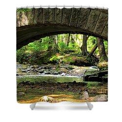 Stone Bridge II Shower Curtain by Elizabeth Dow