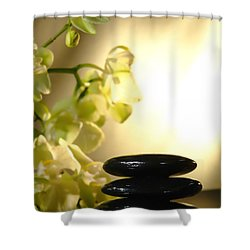 Stone Cairn And Orchids Shower Curtain