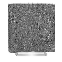 Stone Carving Of Nativity Shower Curtain by Renee Trenholm