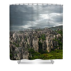 Stone Forest Shower Curtain by Robert Hebert