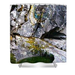 Stone Pool Shower Curtain