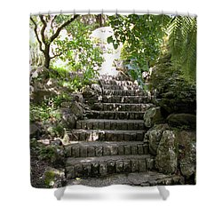 Stone Steps Shower Curtain