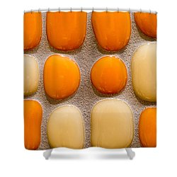 Stone Yolks Shower Curtain