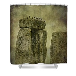 Stonehenge Birds 6 Shower Curtain