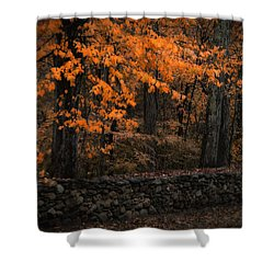 Stonewall In Autumn Shower Curtain by GJ Blackman