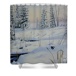 Stoney Swamp Shower Curtain