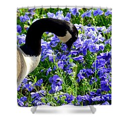 Stop And Smell The Flowers Shower Curtain by Maria Urso