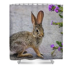 Shower Curtain featuring the photograph Stop And Smell The Flowers by Tammy Espino