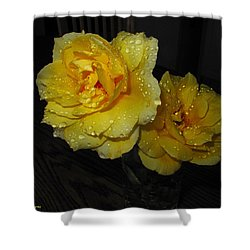 Stop And Smell The Roses Shower Curtain by Joyce Dickens