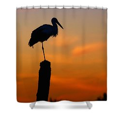 Storck In Silhouette High On A Pole Shower Curtain by Nick  Biemans