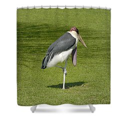 Shower Curtain featuring the photograph Stork by Charles Beeler