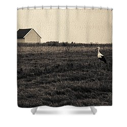 Stork's Tale Shower Curtain by Yevgeni Kacnelson