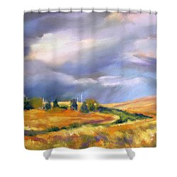 Shower Curtain featuring the painting Storm Colors by Rae Andrews