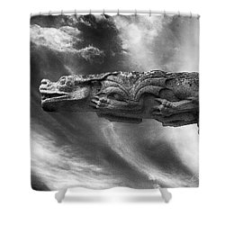 Storm Dragon Shower Curtain