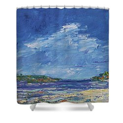 Stormy Day At Picnic Island Shower Curtain by Gail Kent