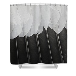 Stormy Feathers Shower Curtain by Judy Whitton