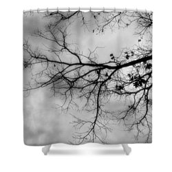 Stormy Morning In Black And White Shower Curtain
