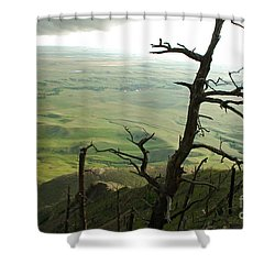 Stormy Tree Shower Curtain by Mary Carol Story