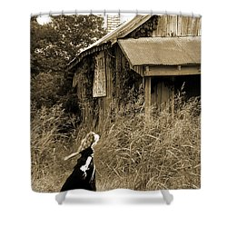 Story Of A Girl - Rural Life Shower Curtain
