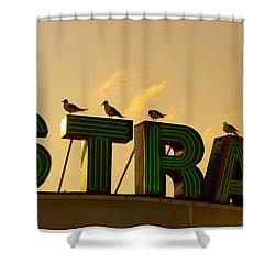 Strand Shower Curtain by Tom Gari Gallery-Three-Photography