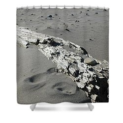 Shower Curtain featuring the photograph Stranded by Christiane Hellner-OBrien