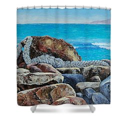 Stranded Shower Curtain by Susan DeLain