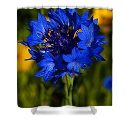 Straw Flower Shower Curtain