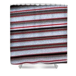 Straw Red Shower Curtain by Carol Lynch