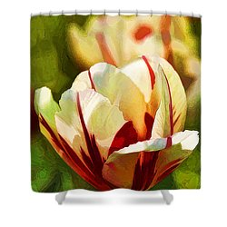 Strawberries And Cream Shower Curtain by Linda Blair
