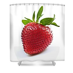 Strawberry On White Background Shower Curtain by Elena Elisseeva