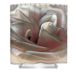 Strawberry Pastry Shower Curtain by Darlene Kwiatkowski