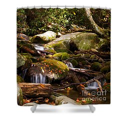 Stream At Roaring Fork Shower Curtain by Lena Auxier