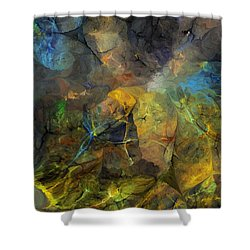 Stream Bed On A Sunny Day Shower Curtain