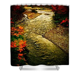 Stream Shower Curtain by Bill Howard