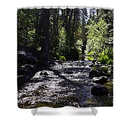 Shower Curtain featuring the photograph Stream by Brian Williamson