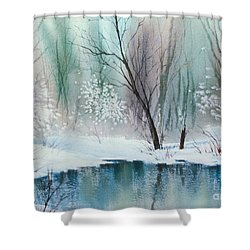 Stream Cove In Winter Shower Curtain