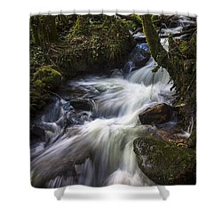 Shower Curtain featuring the photograph Stream On Eume River Galicia Spain by Pablo Avanzini