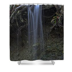 Streaming Mist Shower Curtain by Rod Wiens