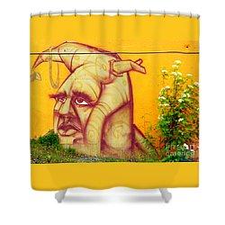 Street Art 3 Shower Curtain