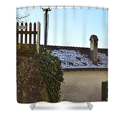 Shower Curtain featuring the photograph Street Lamp At The Castle  by Felicia Tica