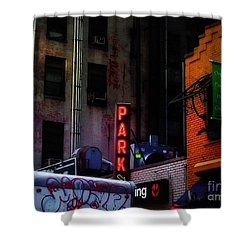 Shower Curtain featuring the photograph Graffiti And Grand Old Buildings by Miriam Danar