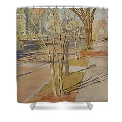 Street Trees With Winter Shadows Shower Curtain