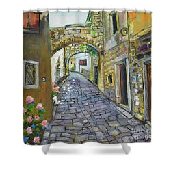 Street View In Pula Shower Curtain