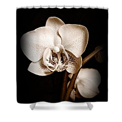 Strength And Beauty Sepia Shower Curtain