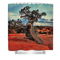 Strength Shower Curtain by Benjamin Yeager