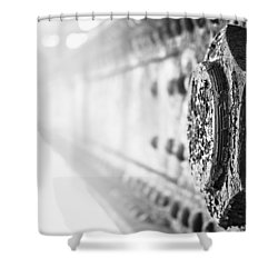 Strength Shower Curtain by Matthew Blum